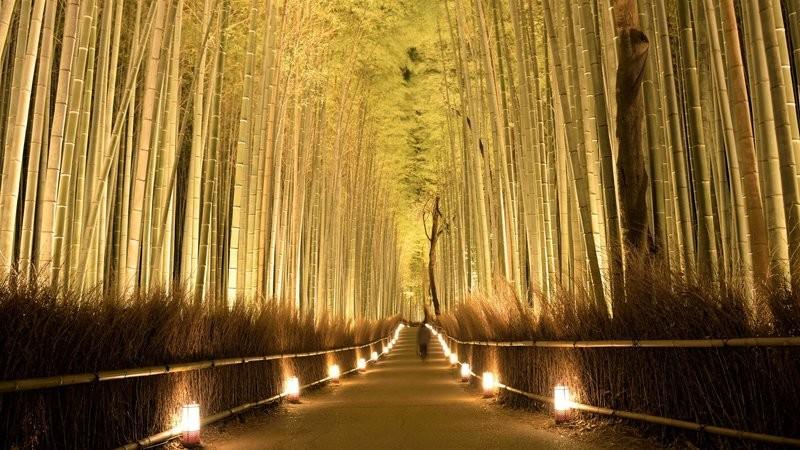Arashiyama Night